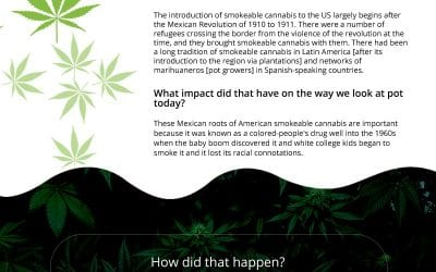 How Marijuana Started in the United States