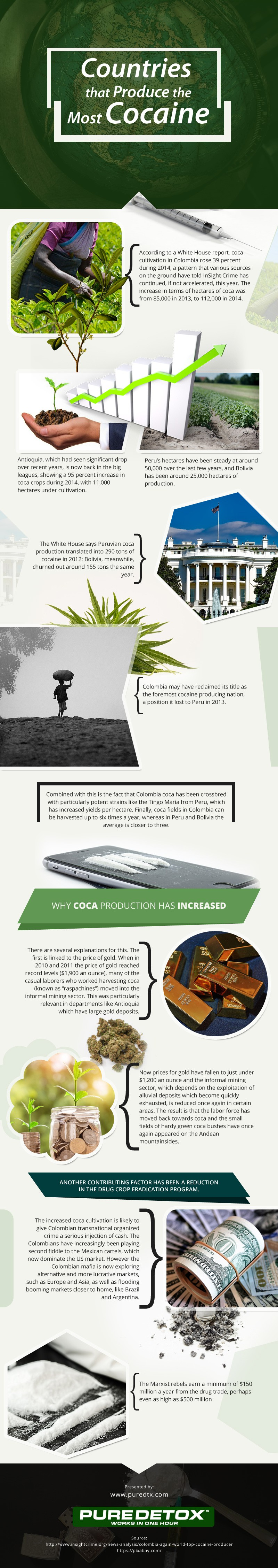 Countries-that-Produce-the-Most-Cocaine Infographic