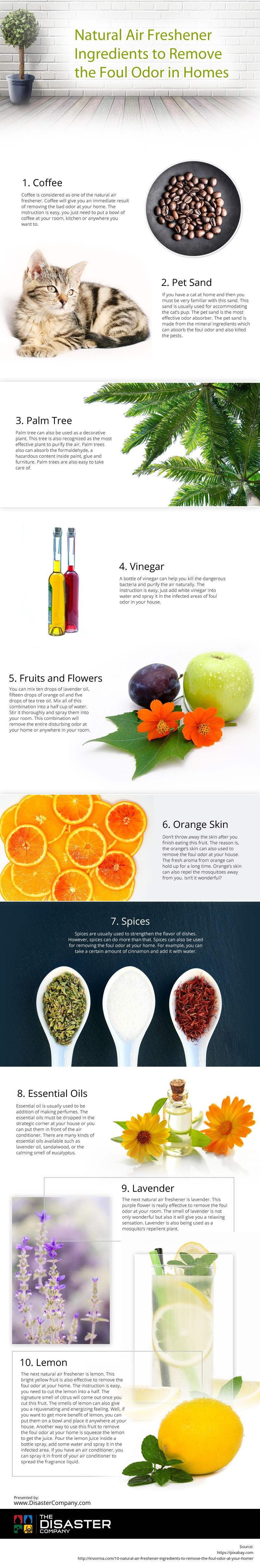 Natural-Air-Freshener-Ingredients-to-Remove-the-Foul-Odor-in-Homes Infographic