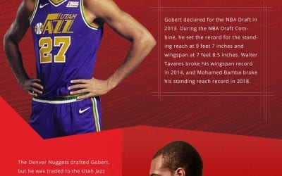 Rudy Gobert Career Stats