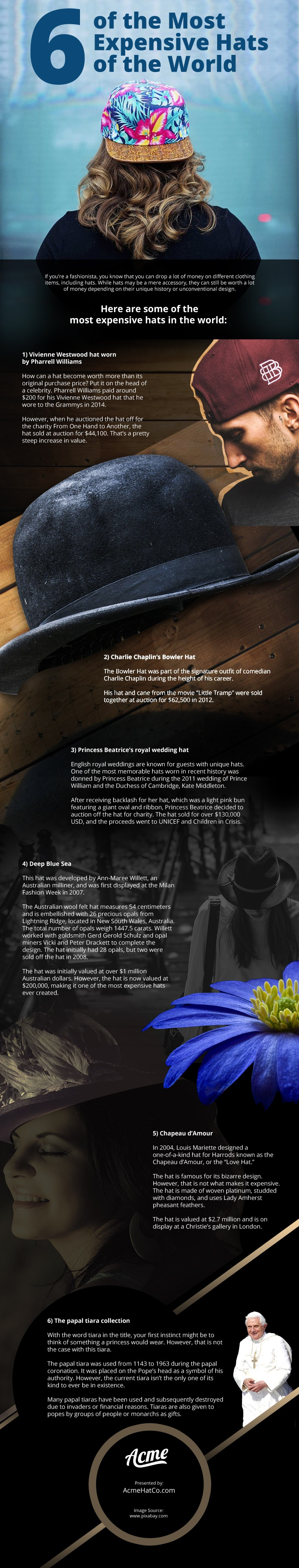 6 of the Most Expensive Hats of the World Infographic